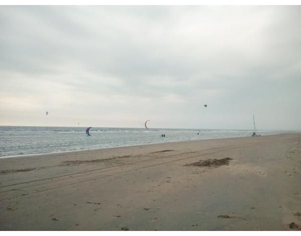 Surfana_2018_foto_Ilse-de-Vries-1024