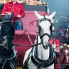 Toppers_in_Concert_WildWest_ThuisBest_Arena_Amsterdam_26-05-2017_Gwendolyne-2163